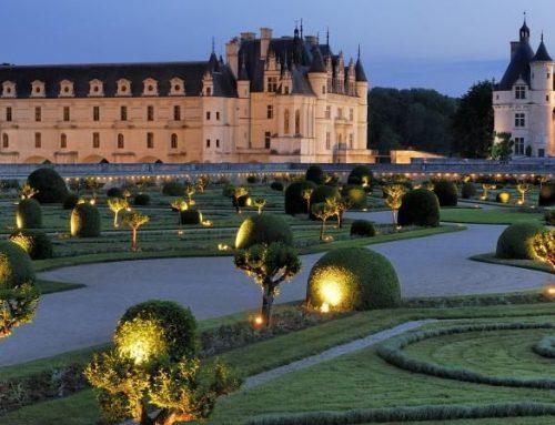 Fleurs d'hiver au château de Chenonceau …
