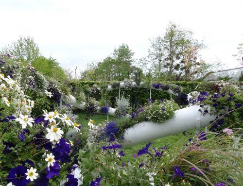Chaumont-sur-Loire : le paradis des jardins